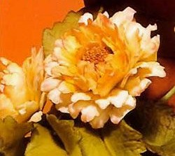 novembre fleur